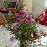 Blumen 13, 10