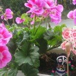 Blumen 13, 4