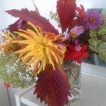 Blumen 13,3