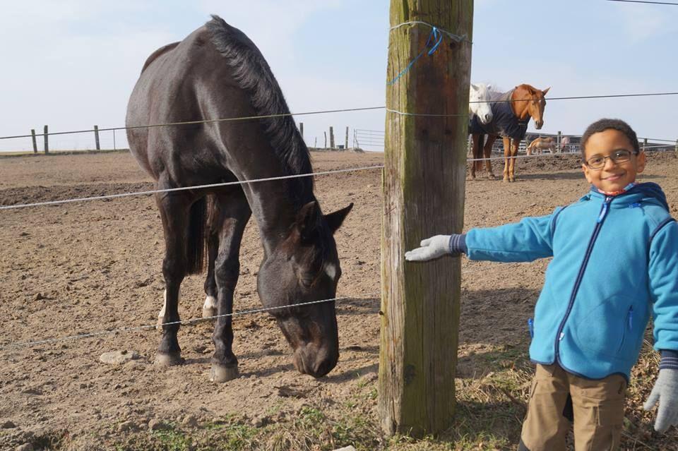 2.3.14 Caspar zeigt uns sein Lieblingspferd