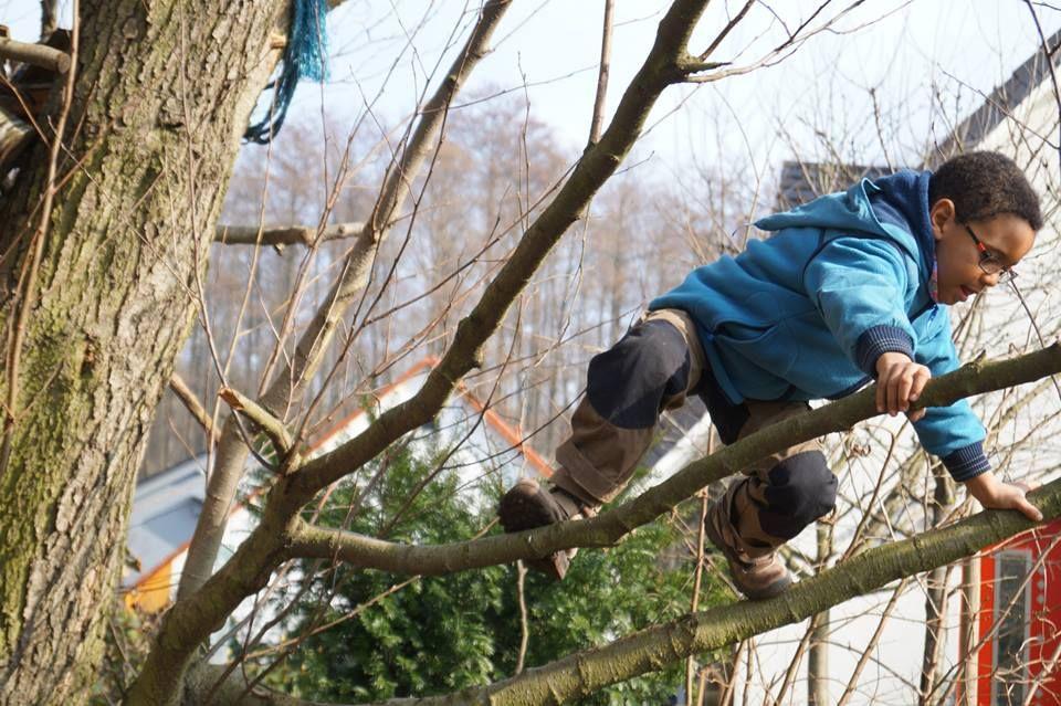 2.3.14 Caspi auf dem Baum