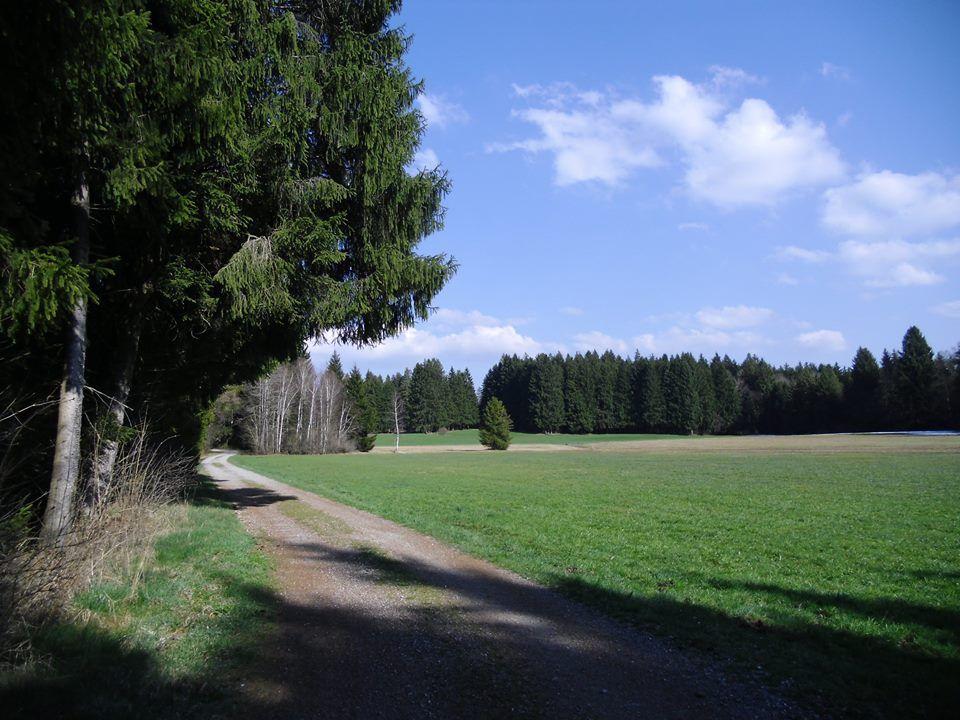 31.3.14 Schön ists in Bayern