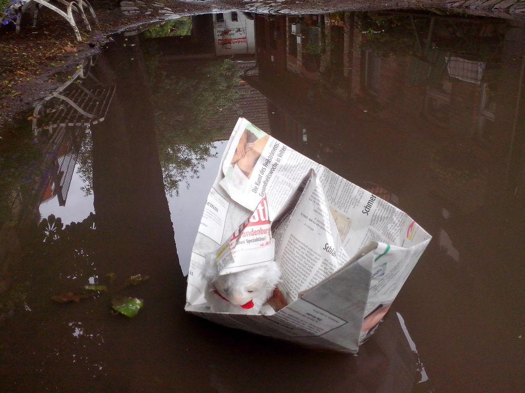 30.5. 14 Püntcchen groß im Papierboot
