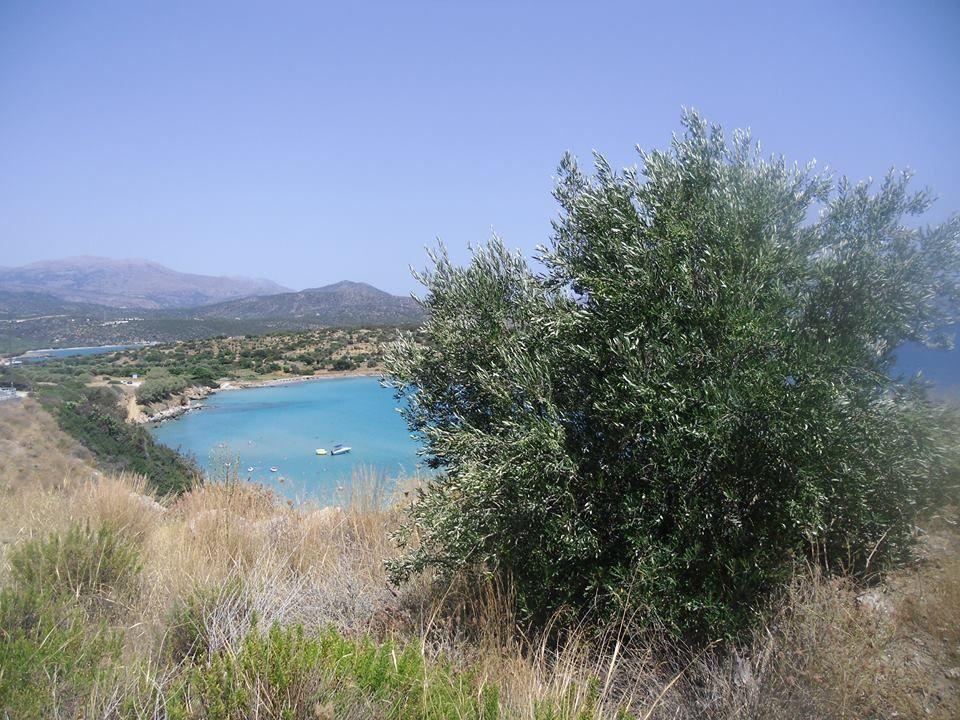 13,7,14 Gegend auf Kreta